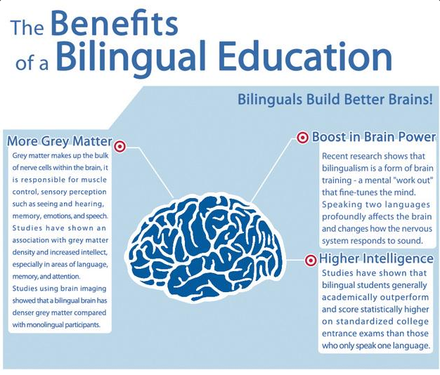 an essay on bilingual education Bilingual education is being taught school subjects in two different languages the united states is home to millions of immigrants each with their own native backgrounds the united states require the immigrants to learn the full english languages when settling into the country.